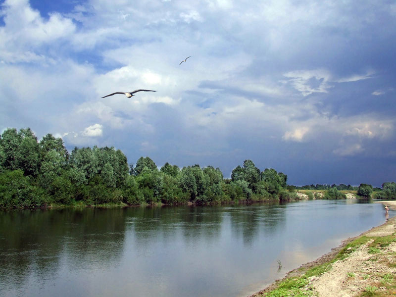 знакомства село пески поворинского района